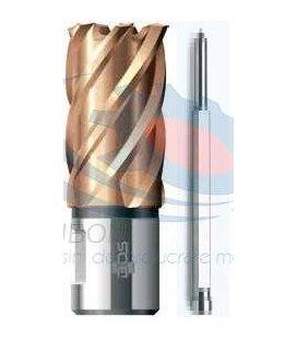 Carote Vario PLUS KBK-VP D12-60/L30 mm